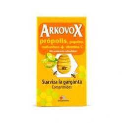 ARKOVOX 24 COMP SABOR CITRICO