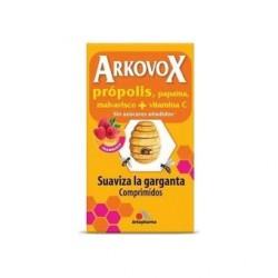 ARKOVOX 24 COMP SABOR FRAMBUESA