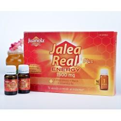 JUANOLA JALEA PLUS ENERGY 14 VIALES